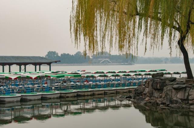 20121109_SF-China_0365